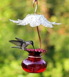 The Hummer Hut gives your visitors a little shade! via Duncraft This is a cool feeder.