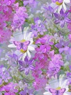 GIF Beautiful Butterflies, Beautiful Flowers, I Love You Mama, Flowers Gif, Spring Awakening, Irish Blessing, Coffee Love, Gifs, Beautiful Horses