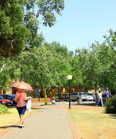 University of the Free State, #UFStoday - Bloemfontein Campus