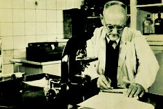 Bayer researcher Professor Gerhard Domagk, discoverer of sulfonamides and Nobel prizewinner of 1939, entered seemingly insignificant data into his logbook.