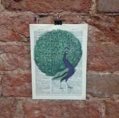 Peacock Dictionary Art Print Bird Illustration Feathers Home Decor