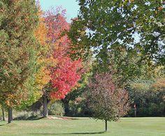 Eastbourne Golf Club