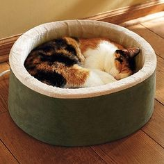 Products Pet Accessories - page 19