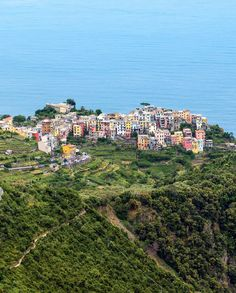 General view from the height of Corniglia Cinque Terre Italy, Different Points Of View, Riomaggiore, Nature Hd, Italy Travel Tips, Regions Of Italy, Tourist Trap, Northern Italy, The Locals