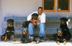 Will Smith and his rottweilers