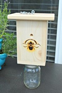 How to trap and kill carpenter bees, wood bees, wasps, hornets and yellow jackets naturally. Kill Carpenter Bees, Carpenter Bee Trap, Wasp Traps, Bee Traps, Wood Bee Trap, Wood Wasp, Bee Catcher, Outdoor Crafts, Outdoor Ideas