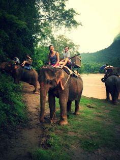 День 3. Деревня слонов | Elephants Village