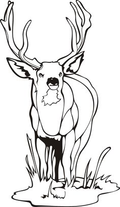 Deer coloring pages http://amazing-coloring-pages.blogspot.com/2007/09/deer-coloring-pages.html