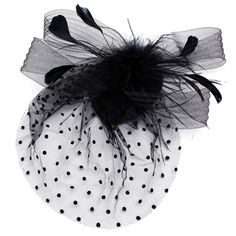 Bride Women Dot Black White Feather Mesh Fascinator Wedding Party Headpieces is cheap, see other hair accessories on NewChic. Bridal Hair Fascinators, Fascinator Hairstyles, Fascinator Hats, Bride Hairstyles, Headpieces, Bride Hair Accessories, Head Accessories, Black And White Fascinators, Feather Hair Clips
