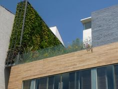 verde 360º una terraza con vista a vegetación en lugar de un muro colindante