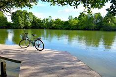 #bike #chill #chillout #color #garden #green #lake #land #landscape #landscapes #natural #nature #park #relax #relaxing #river #summer #tree #trees #view #water