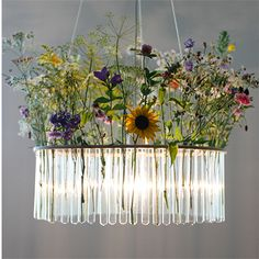 1-Tier Test Tube Chandelier | Pani Jurek