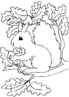 igel-eichhörnchen mandala | ausmalbilder kinder