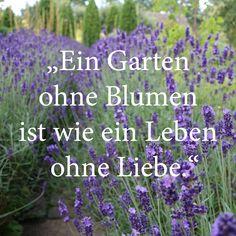 Gartensprüche, Lavendel