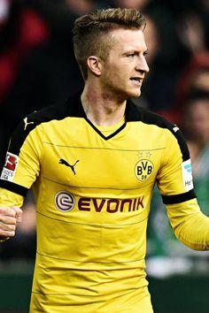 Borussia Dortmund Daily! : Photo