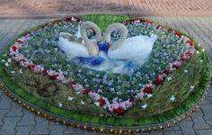 Ventspils International Flower Carpet Competition 2012 [foto J.Presņikov]