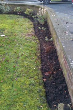 Border work edged and weeded larch close