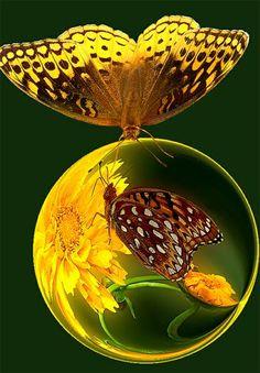 One islovedbecauseone is loved.No reason is neededfor loving.Paulo Coelho