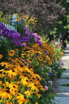 sidewalk, side yard, front yard, less grass, flowe...