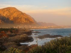 Whale watching in Hermanus Bay, South Africa #gardenroute