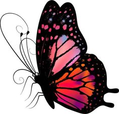 """Photo from album """"Рисованные бабочки"""" on Yandex. Butterfly Clip Art, Butterfly Quilt, Butterfly Tattoo Designs, Butterfly Painting, Butterfly Kisses, Most Beautiful Butterfly, Pics Art, Little White, Skull Art"""