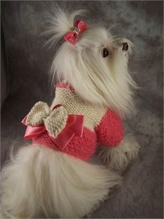 Lady collection-need this little sweater for Bella!