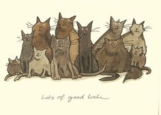 M107 LOTS OF GOOD LUCK a Two Bad Mice card by Anita Jeram