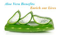 How can Aloe Vera Benefits Enrich our Lives?