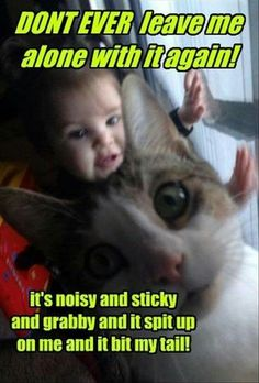 Lol, my poor kitty is so patient with my baby girl.