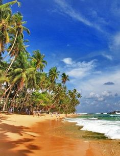 Good budget tips for visiting Sri Lanka! I had know idea the country had so many gorgeous beaches.  Für spannende Infos von rest folge uns auf Pinterest: restdrink...oder schau doch einfach auf www.restdrink.de vorbei