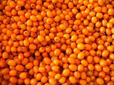 Can Sea Buckthorn Oil Cure Rosacea ? Can it Touch Demodex ?