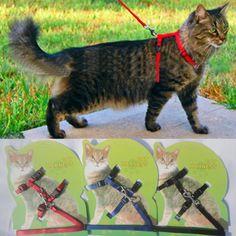 Kot Szelki I Smycz Gorąca Sprzedaż 4 Kolory Nylon Produkty dla Zwierząt Regulowany Zwierzęta Trakcji Szelki Pas Cat Kitten Halter kołnierz