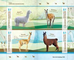 Fauna- Camélidos Sudamericanos Presentación: Minipliego de cuatro sellos postales con bordes de hoja ilustrados. Viñetas de Camélidos: Alpaca(Lama pacos), Guanaco (Lama guanicoe),Vicuña (Vicugna vicugna),Llama (Lama glama). Año de Emisión: 2015