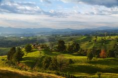 Colombian Landscape by Pedro Szekely on 500px. The coffee region of Colombia has beautiful landscapes. Shot from the observation tower in the small town of Filandia, Quindio.
