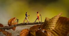 A flickr group of Tiny People! | Bergsma | Pinterest | Autumn, Autumn leaves and Hiking