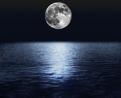 The moon has more pull on Earth than you might expect. Dive on in! This wonder is going to turn the tide of your mind. Ocean Pictures, Moon Pictures, Ocean Wallpaper, Bird Wallpaper, Moon On The Water, Feminine Energy, Full Moon, Astronomy, Illusions
