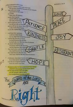 Hosea 14:9. Bible Journaling.