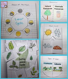 Primary Interactive Science Notebook Activities good ideas for younger grades. She's from Texas so it matches TEKS