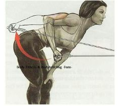 Cable tricep extensions.....get that nice tight tricep....no more jiggly tri's!!! 3-4 sets of 12 each arm.