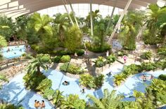 Initial design of the Subtropical Swimming Paradise at Woburn Forest