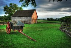 Country morning (photo by James Jordan)