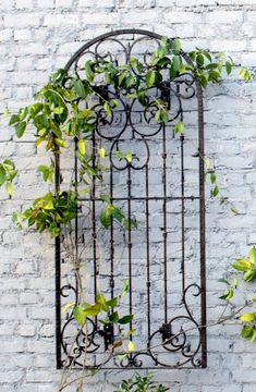 Metal Iron Scroll Wall Trellis w/Mounting Brackets trellis garden trellis yard art wall art metal ga Metal Garden Trellis, Wall Trellis, Wrought Iron Trellis, Wall Climbing Plants, Patio Wall Decor, Garden Wall Decorations, Iron Wall Decor, Metal Pergola, Pergola Kits