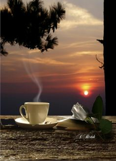 Dawning with favorite coffee. Good Morning Coffee, Good Morning Good Night, Good Morning Images, Coffee Gif, Coffee Quotes, Fresh Coffee, Coffee Love, Gif Café, Coffee Drinks