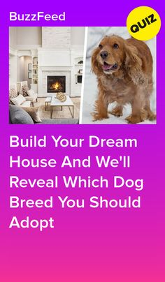 Build Your Dream House And We'll Reveal Which Dog Breed You Should Adopt Dog Quizzes, Quizzes Funny, Quizzes For Fun, Random Quizzes, Buzzfeed Personality Quiz, Personality Quizzes, Dog Breed Quiz, Best Buzzfeed Quizzes, Animal Quiz