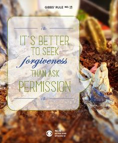 Gibbs' Rule No. 18: It's better to seek forgiveness than ask permission. #GibbsRules
