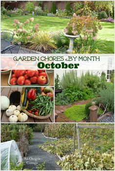 Garden Chores For the Month of October for vegetable gardens, flower beds and yards - An Oregon Cottage