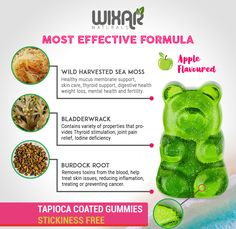 5 Problems Everyone Has with Sea Moss Gummy Bears – How to Solved Them Cool Things To Make, 3 Things, Irish Sea, Sea Moss, Gummy Bears, Dumb And Dumber, Make It Simple, The Help, The Cure