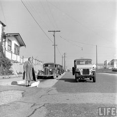 Most importantly, Baby is not going to let Mrs. Swanson step in front of any cars. | Community Post: In 1947 This Lady Had A Seeing Eye Cat