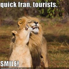 Quick Fran, tourists...SMILE!!!  #travel #humor #FlexiClub