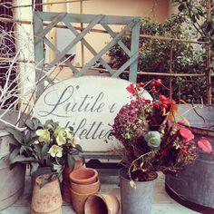 JARDIN D'HIVER #enricastabile #marionobile #elenacampa #sofiameda #enricastabile #green #world #magic #wonder #wow #home #decor #interior #design #inauguration #winter #garden #preview #autumn #brown #leaf #leaves #secret #place #plants